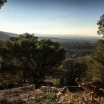 Gan Ner View from Gilboa